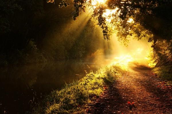El sol iluminando el río y el camino