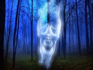 Calavera en el bosque a la medianoche