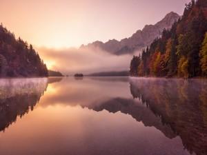 Una mañana con niebla en el lago