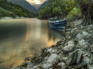 Bote a orillas de un río