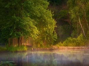 Un pequeño puente sobre el lago