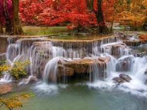 Postal: Pequeñas cascadas en un entorno otoñal