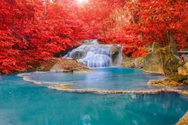 Árboles en otoño junto a una cascada