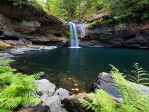 Postal: Pequeña cascada en el río Coquille (Estados Unidos)