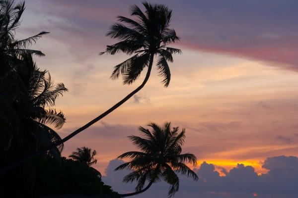 Puesta de sol vista desde una isla en las Maldivas