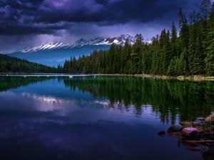 Postal: Lago ubicado en el Valle de los Cinco Lagos (Alberta, Canadá)