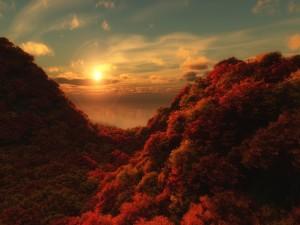 Postal: Los colores del otoño al amanecer