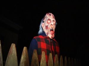 Un zombi tras la valla