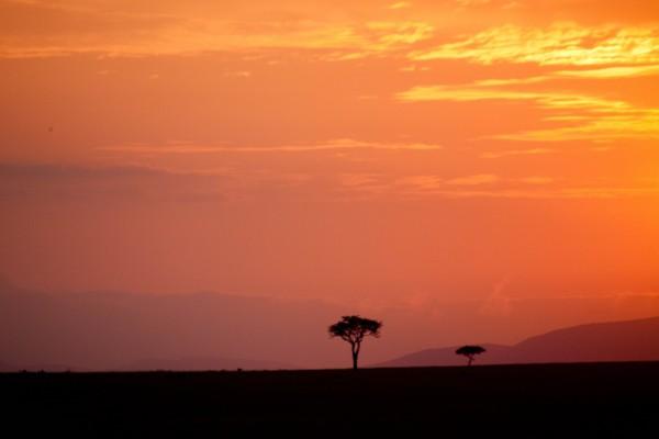 Cielo al atardecer sobre el Masái Mara