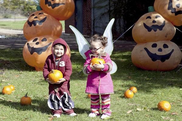 Niños colocando calabazas de Halloween en el jardín