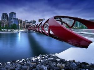 Postal: Puente de la Paz del arquitecto Santiago Calatrava (Calgary, Canadá)
