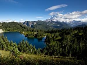 Postal: Vistas del monte Rainier