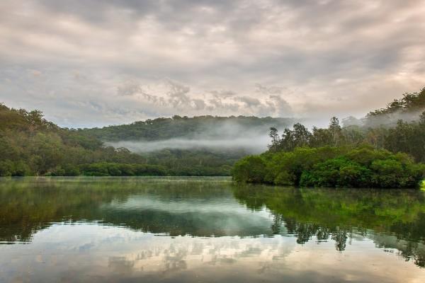 Mañana brumosa en el curso del río Berowra Creek (Australia)