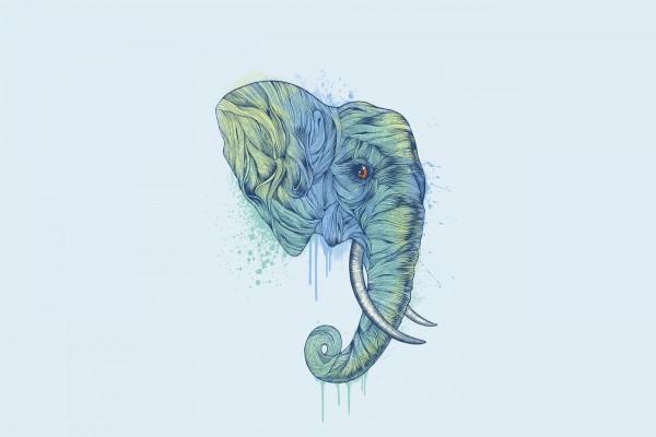 Dibujo de la cabeza de un elefante