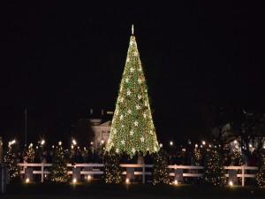 Postal: Gente en torno al árbol de Navidad