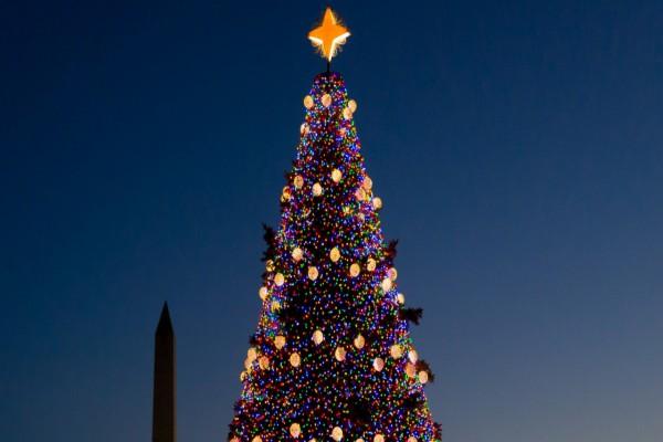 Árbol de Navidad en Washington D. C.