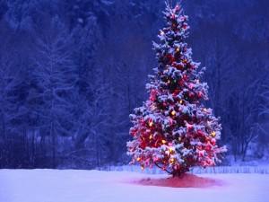 Árbol de Navidad iluminado sobre la nieve