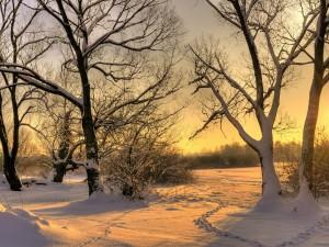 Un atardecer cubierto de nieve