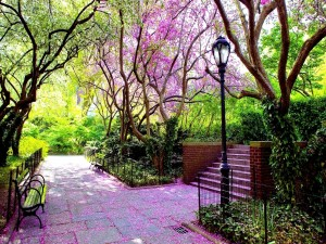 Hermoso día de primavera en el parque