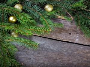 Postal: Bolas doradas junto a unas ramas de pino en Navidad