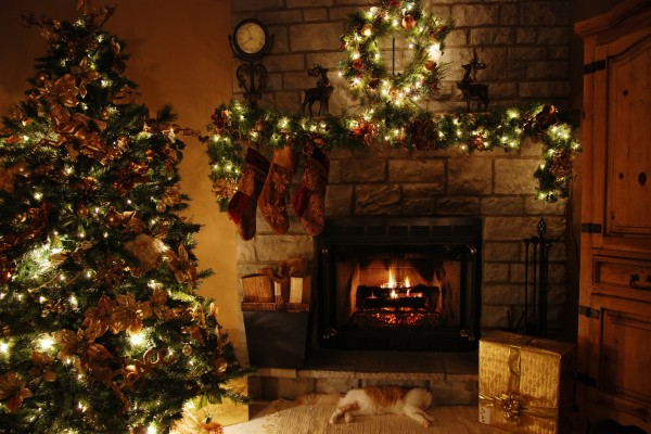 Gato dormido junto a la chimenea en la noche de Navidad