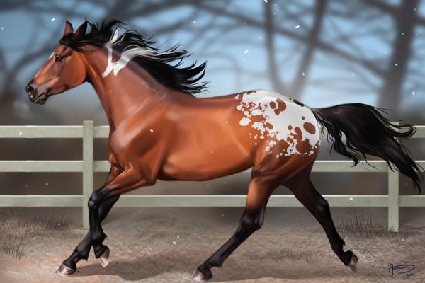 Nieva sobre el caballo