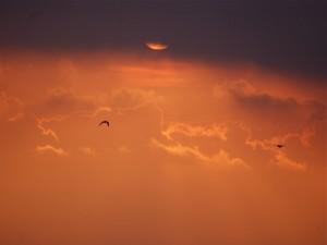 Oscuridad y luz en el mismo cielo