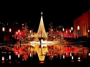 Postal: Luces de Navidad reflejadas en el agua