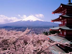 Postal: Preciosas vistas del monte Fuji
