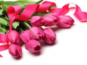 Postal: Un bello ramo de tulipanes con una cinta fucsia