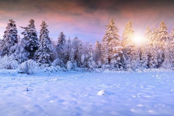 Los tibios rayos de sol iluminan el paisaje invernal