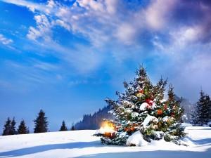 Postal: Árbol de Navidad cubierto con copos de nieve