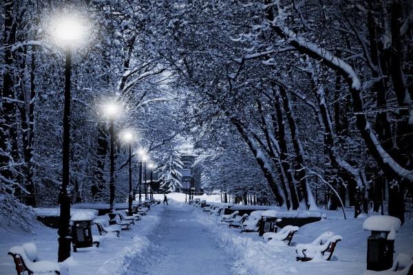 Camino solitario en invierno