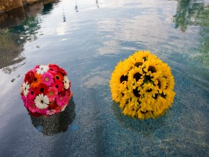 Bolas de gerberas y girasoles sobre el agua
