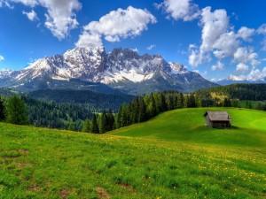 Solitaria cabaña en un verde valle