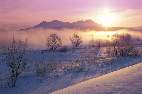 Un precioso día cubierto de nieve