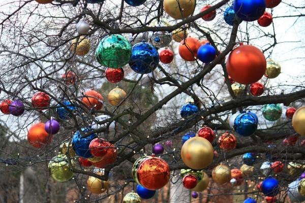 Bolas de Navidad multicolores colgadas de un árbol