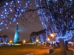 Luces navideñas iluminando un parque de San Petersburgo (Rusia)