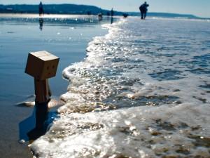 Danbo en la orilla del mar
