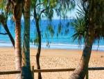 Una playa vista entre las palmeras