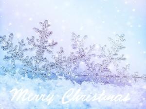 Copos de nieve con un mensaje navideño