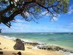 Mar tranquilo en la playa