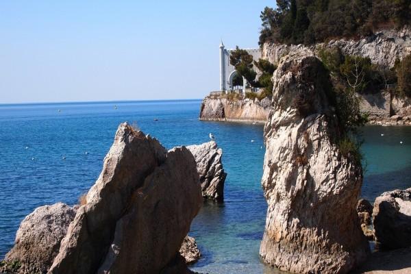 Gaviotas sobre el mar y las rocas