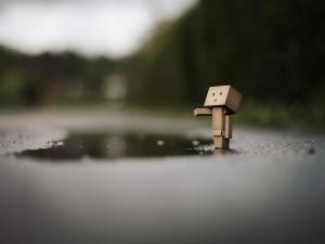 Danbo junto a un charco de agua