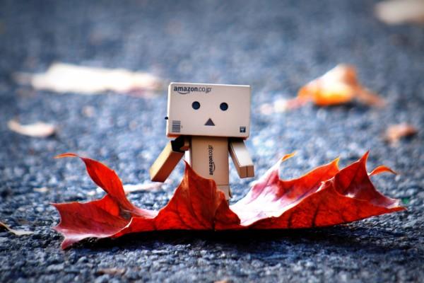 Hojas y Danbo en otoño