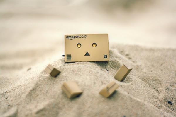 Danbo enterrado en la arena
