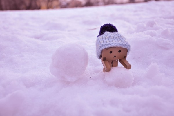Danbo en la nieve