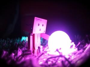 Postal: Danbo junto a una bola de luz