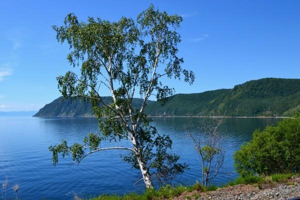 Admirando la belleza del lago