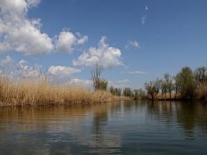 Postal: Agua de un río